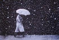 Winter's Walk. 2005. 18x24
