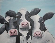 Cows. 2013. 18x20