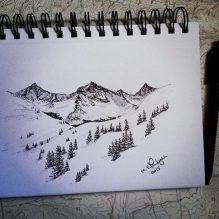Copper Peeking Sketch. 2015. 5x7